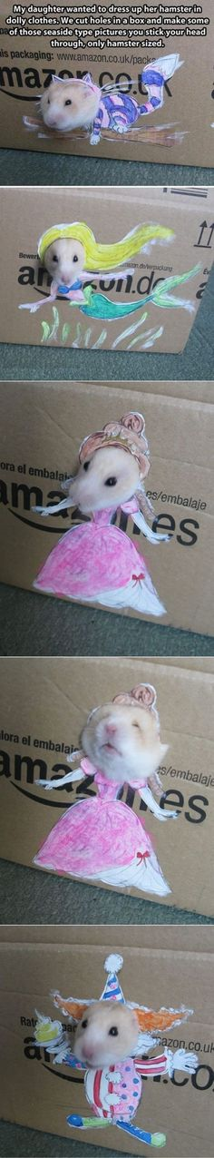 Hamster dress-up!- I'm so sorry Nibs but this is just too good not to do! whatcha think @Ruthanne Monteleone ?