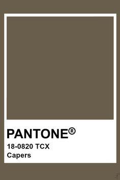 Color pantone COLOR in 2019 Pantone Pantone colour palettes Pantone Tcx, Pantone Swatches, Pantone 2020, Paint Swatches, Color Swatches, Pantone Colour Palettes, Pantone Color, Colour Pallete, Colour Schemes