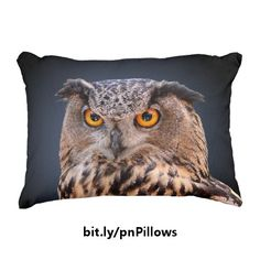 This fun accent pillow features a face-on close-up head shot photograph of a mottled brown eagle owl showing its distinctive orange eyes. This bird of prey is presented against a gradient blue to black background. https://www.zazzle.com/z/3sn0j&tc=20170222_pint_SSOZ #homedecor #bedding #animals #birds #photography #StudioDalio #Zazzle