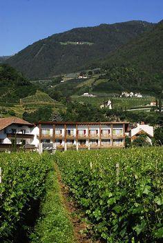 Yoga und Wellness und Berge:  Hotel Schwarzschmied, Lana, Italien | Trentino Südtirol