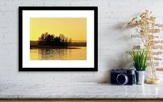 Golden Light Framed Print by Jouko Lehto Hanging Wire, Landscapes, Framed Prints, Paisajes, Scenery