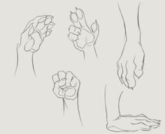 Five fingered paw tutorial