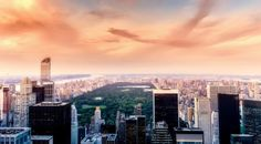 8 free things to do in new york