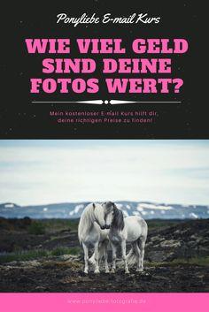 Träumst du auch davon mit deinen Pferdefotos Geld zu verdienen? Möchtest du gerne richtig durchstarten, weißt aber einfach nicht so genau wie du anfangen sollst? Hier bekommst du alle Tipps und Tricks vom Profifotografen direkt an die Hand: