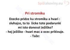 Pri stromiku - Spišiakoviny.eu