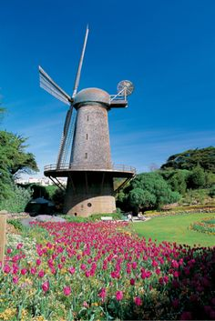 Golden Gate Park Windmill #RideColorfully