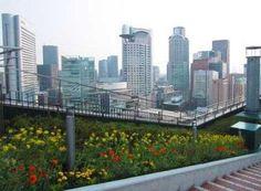 Osaka : potager aérien sur le toit de la gare |vivrelejapon.com