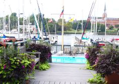 The Yacht Club building waterfront community pool.