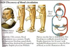 William Harvey discovered blood circulation in 1628 William Harvey, Gk In Hindi, History Of India, Extraordinary People, Funny Slogans, Important People, Modern History, Astronomy, How To Look Pretty