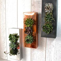 Gunmetal Grey Living Wall Art Planter by Londongardentrading