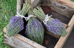 Lavender Wands, Lavender Crafts, Lavender Recipes, Lavender Wreath, Lavender Garden, Lavender Sachets, Lavender Fields, Lavender Flowers, Dried Flowers