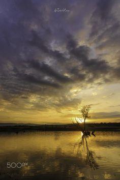 morning - Kurtboğazı Barajında gün doğarken