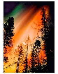 green & orange northern lights
