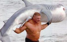 Man vs Jaws