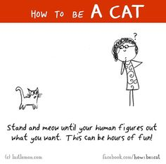 How+To+Be+A+Cat+Illustrations