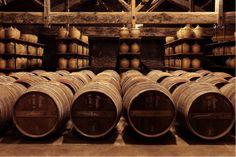 Hennessy, Le Chai du Fondateur - #JPLVMH