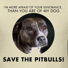 its not the dog pulling the leash, its the person holding it. SAVE THE BULLIES!!