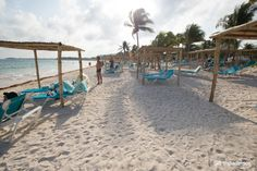 Akumal Bay Beach & Wellness Resort (Riviera Maya, Mexico) - Resort (All-Inclusive) Reviews - TripAdvisor Cancun, Tulum, Akumal Bay, Quintana Roo Mexico, Wellness Resort, Riviera Maya Mexico, Mexico Resorts, July 7, All Inclusive Resorts