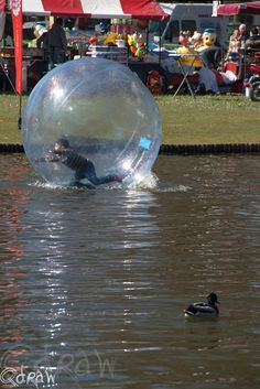Photograph Zorbing ball by Qdraw .nl on 500px