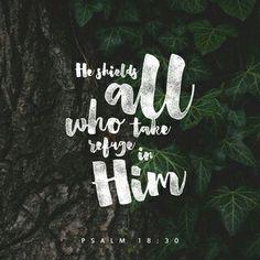 El camino de Dios es perfecto; la palabra del Señor es intachable. Escudo es Dios a los que en él se refugian. Sal 18:30 NVI http://bible.com/128/psa.18.30.NVI