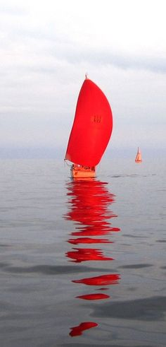 foresail: fyschebone: This is somehow my most popular photo. Grainy. Red. From a slow Mac race. Bless you all for loving it, but jfc, why do you love such a grainy POS photo? Boat? Boat❤️