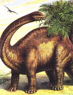 The Brontosaurus. Along with the T-Rex & Triceratops were probably the first dinosaurs we learned about & loved as kids. That's why many are still shocked to learn the Brontosaurus never existed. Its discoverer, Othniel Marsh only found the fossils of its body (the most complete set ever found at that time). Missing the head, he attached one from a different dinosaur. Paleontologists have known about the error since 1903 and the dino with its correct head has since been  known as…