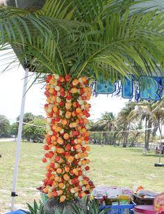 fruit tree!?