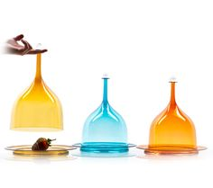Glass pastry and cheese domes by Joe Cariati