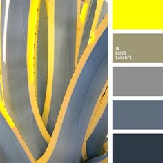 If you prefer a gray color, this palette is ideal for you, as it collected the shades of gray that are in harmony with each other. And for emphasis, you can use a bright yellow color.
