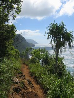 KAUAI: Napali Coast Kalalau Trail – I will be hiking the northern side of this breathtaking coastline—with its plunging sea cliffs, lush rainforests and valleys and panoramic ocean views—Kalalau trail.
