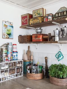 vintage kitchen, vertical organization on shelves, old tins, wooden box, green plant, clipboard on wall, kitchen things collected in round wooden box/canister, spice organization