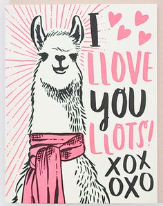 print & pattern... some quirky illustrative designs from Hello! Lucky featuring fashionable subjects such as unicorns, cacti and llamas.