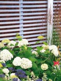 The old saying that good fences make good neighbors may be true, if fencing's popularity ranking against other outdoor structures in the survey (89.6%) is any indication. Fences are the obvious choice for adding privacy but they also can create a beautiful backdrop for blooming plants.