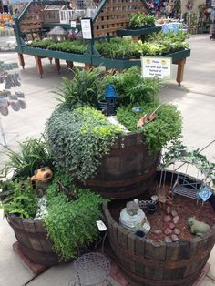 barrels will make an expensive project, but I do like this - cascading fairy gardens in wine barrels