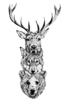 Stag wolf bear tattoo//I'd definitely get the stag head