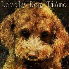 Art picture by Seizi.N 愛犬TiAmoの絵をこのpickで加工しました。  今僕はこのバンドの新しいジャンルでメタルサンバにハマってます、ワールドカップもこの音楽ジャンルで世界へ、ビバ・サンバ!!! Huaska - Trem das Onze http://youtu.be/LBKxOJmkpiY