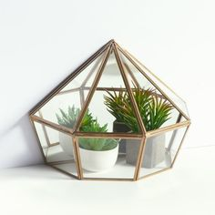 Uyova freestanding glass and brass terrarium, brass, La Redoute... (2.075 RUB) ❤ liked on Polyvore featuring home, home decor, floral decor, brass home accessories, brass home decor, glass terrarium and glass home decor
