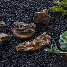 400g Black Natural Polished Pebbles 0.5cm  1cm length image 1 Terrarium Containers, Glass Terrarium, Terrarium Ideas, Planter Ideas, Terrariums, Small Potted Plants, Air Plants, Polished Pebble, Ceramic Planters