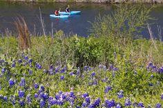 La aventura al aire libre espera en San Antonio en este receso de primavera     SAN ANTONIO Marzo de 2017 /PRNewswire-/- Diversión al aire libre emociones en parques temáticos y excursiones llenas de adrenalina esperan en San Antonio en este receso de primavera. No es su pueblo promedio ni su aventura promedio. En cada esquina del pueblo y cada curva del río hay historia por hacer. Estas son algunas formas de disfrutar los magníficos exteriores en San Antonio y sus alrededores: Llegue en…