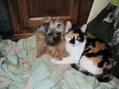 Shiloh and Renata. Best friends forever!