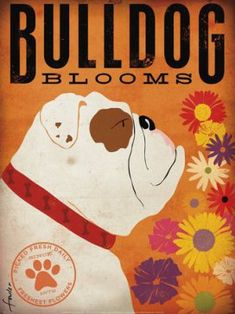 Items similar to English Bulldog Flower company original graphic illustration giclee archival signed artists print by Stephen Fowler on Etsy White Pug, Cute Bulldogs, Flower Company, Poster Prints, Art Prints, Bulldog Puppies, Bulldog Mascot, Print Artist, Home Wall Art