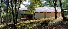 SunLodge Safari - Suncamp Holidays