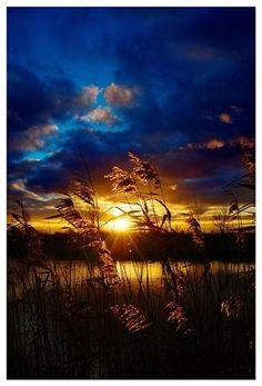 MyPinBlog - Golden sunset nature photography #photography #landscapes #photo #landscape #photos