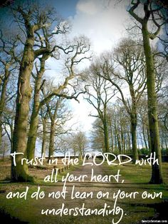 Trust in the LORD with all your heart,  and do not lean on your own understanding.
