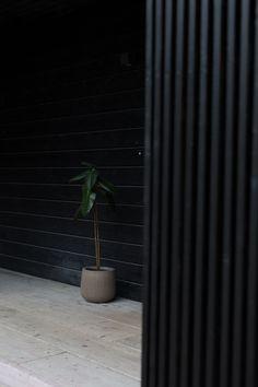 Rimoitus terassilla - MINISHOW Entrance, Architecture, Wall, Plants, Arquitetura, Entryway, Door Entry, Walls, Plant