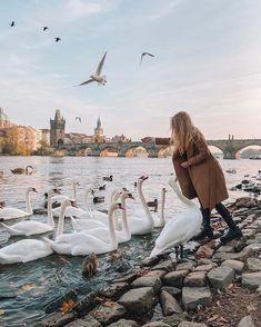 Prague Guide, Prague Travel Guide, Visit Prague, Slovenia, Czech Republic, Travel Guides, Poland, Travel Inspiration, Travel Photography