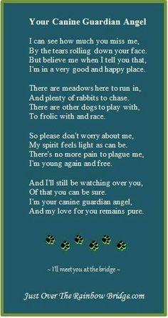 Canine Guardian Angel