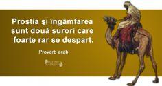 """""""Prostia şi îngâmfarea sunt două surori care foarte rar se despart."""" Proverb arab Good People, Proverbs, Words, Memes, Quotes, Movie Posters, Life, Adele, Engagement Rings"""