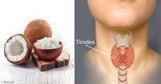 La enfermedad de la tiroides puede afectar casi cada aspecto de su salud, incluyendo su capacidad para lograr y mantener un peso saludable. http://articulos.mercola.com/sitios/articulos/archivo/2015/11/25/aceite-de-coco-para-la-tiroides.aspx