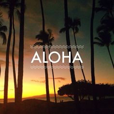 Hawaiian sunsets are the best! #aloha #Hawaii #love #eidon #eidonsurf #palmtrees #sunset #beautiful #maui #beach #ocean #sea #sun #808 #lifeisswell #livetravelsurf